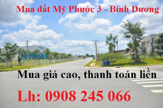 can mua dat my phuoc 3 gia cao thanh toan trong ngay mua rat thien tri